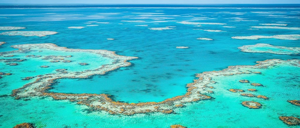 Great Barrier Reef, Australia.