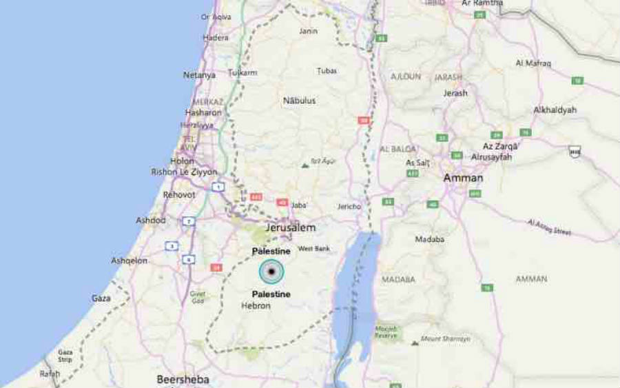 Bing shows Palestine on the map