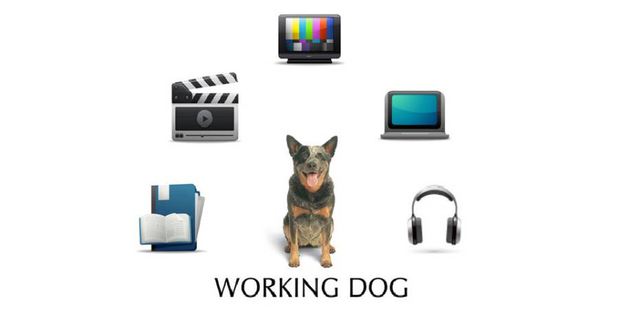 Working Dogs Productions Logo. Image: Working Dog Productions website.