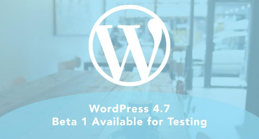 The new WordPress also features live previews of CSS skins and configurations. Image Source: Devote Press