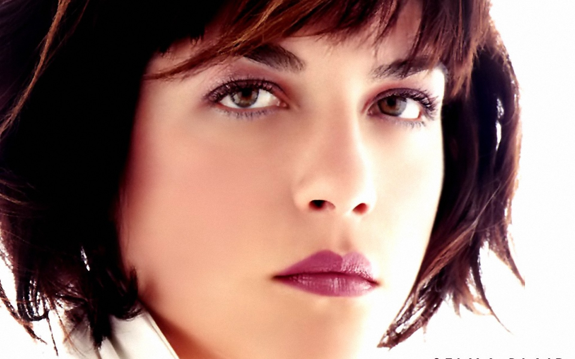 Selma Blair Beitner born June 23 1972 is an American actress She played a number of small roles in films and on television before obtaining recognition for her
