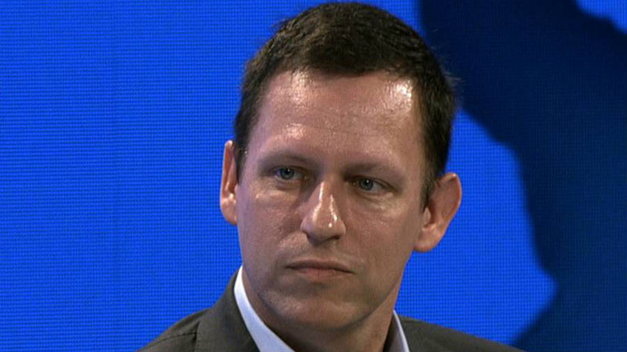 Peter Thiel secretly funded HUlk Hogan's lawsuit