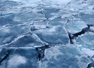 Arctic-sea-ice-volume-Arizona-State-University
