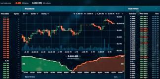 Financial market forecast - presidential election 2020