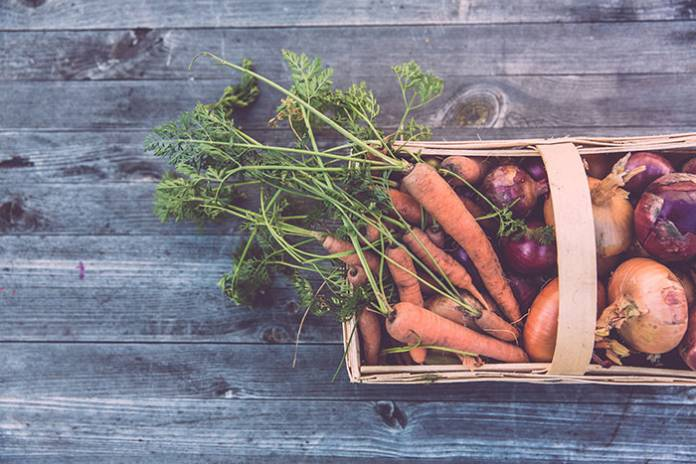 3 Ways to Live a More Sustainable Lifestyle