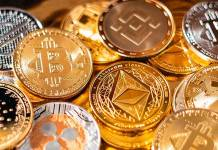Daniel Calugar Explains How to Master the Cryptocurrency Market Cycle