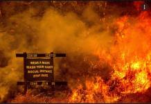 Professor of Criminology Charged With Setting Fires to Sierra Nevada Forest